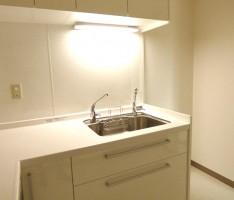 キッチンパネルも白で統一