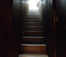 階段を見上げる。プライベート感のある佇まい。