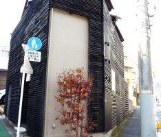 植木の背景はグレイッシュなブラウンの壁面