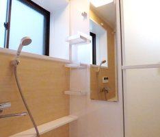 窓の位置によりミラー+収納棚位置変更