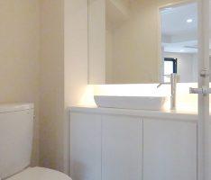 洗面カウンターもドアと同素材で構成