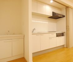 手を洗う為の洗面台とキッチン