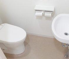 衛生器具は既存でも印象が変わります